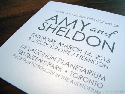 Amy & Sheldon's Wedding